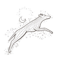 Zentangle wolf jumps on background night sky 2018 vector