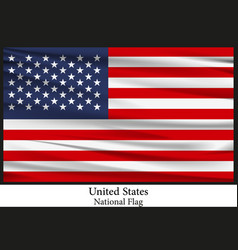 national flag of united states of america vector image vector image