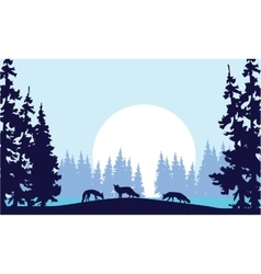 Silhouette of three fox in hill vector image