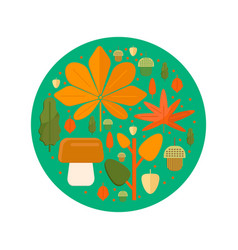 autumn foliage composition in circle shape vector image
