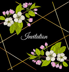 beautiful invitation card with apple blossom vector image