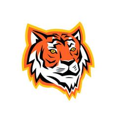 Bengal tiger head mascot vector