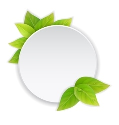 Circular paper label with green leaves vector image