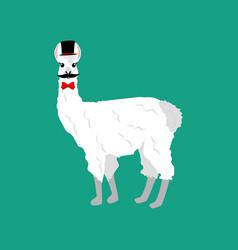 Llama with mustache vector