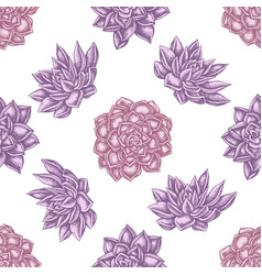 Seamless pattern with hand drawn pastel succulent vector