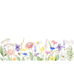 Watercolor banner with wildflower vector