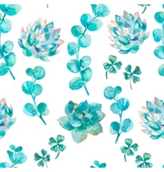 Watercolor eucalyptus leaves and succulent Hand vector image