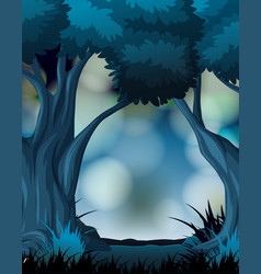a dark forest background vector image