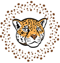 Beautiful cartoon leopard vector
