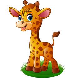 Cartoon baby giraffe vector