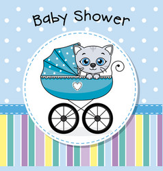 cat inside baby carriage vector image
