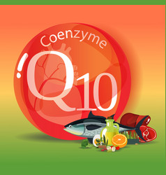 Coenzyme q10 healthy eating vector