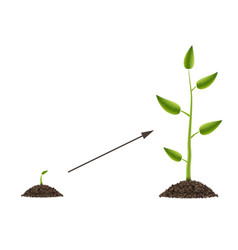 Creative of growth up green vector