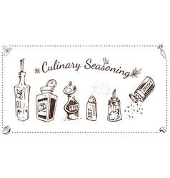 culinary seasonings hand drawn set vector image