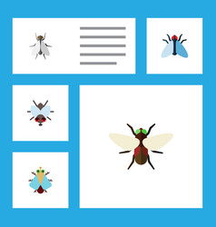 Flat icon buzz set of tiny housefly bluebottle vector