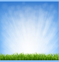 grass with blue sky and grass border vector image
