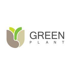 green leaf plant logo vector image