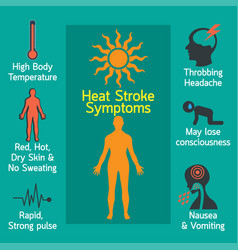 Heat stroke infographic vector
