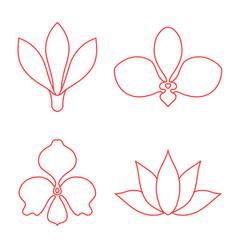 set of flower line art on white background vector image