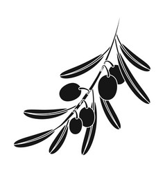 Olive brancholives single icon in black style vector