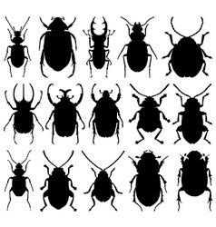 Beetle silhouettes vector