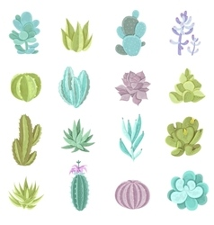 Cactus Icons Set vector