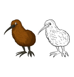 Doodle animal for kiwi bird vector