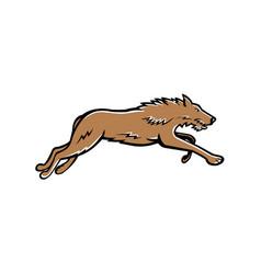 scottish deerhound dog running mascot vector image