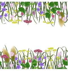 Seamless border with seven herbs vector