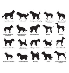 Set dogs silhouettes-6 vector