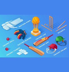 Set isolated cricket items or ball sport vector