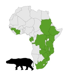 hippo africa range vector image vector image