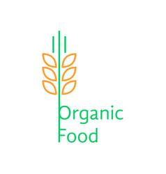 thin line wheat ears like organic food logo vector image