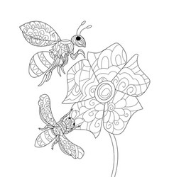 Bees on a flower coloring book for adults vector
