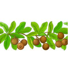 brazil nut pattern on white background vector image