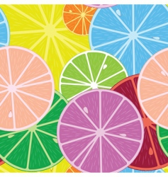 citric pattern vector image