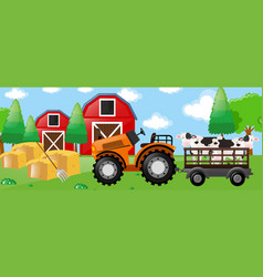 Cows on tractor in the farm vector