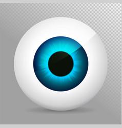 eye blue realistic 3d eyeball irispupil icon vector image