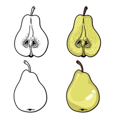 isolated pears graphic stylized drawing black vector image