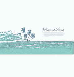 sandy beach with palm trees sea waves surf vector image