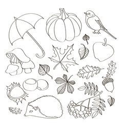 set of autumn symbols vector image