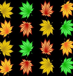 The pattern of autumn leaves vector