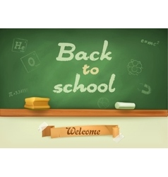 Chalkboard with sign back to school vector image vector image