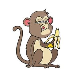 monkey with banana vector image