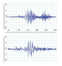Seismographs Graph output by a seismograph vector image vector image