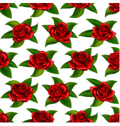beautiful red rose flowers seamless floral summer vector image