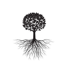 black tree with leaves and roots outline vector image