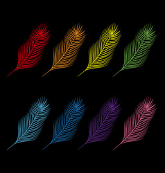 feather set collection colorful collection vector image