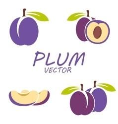 flat plum icons set vector image