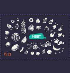 hand drawn fruits and berries set icons vector image